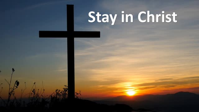 Stay In Christ