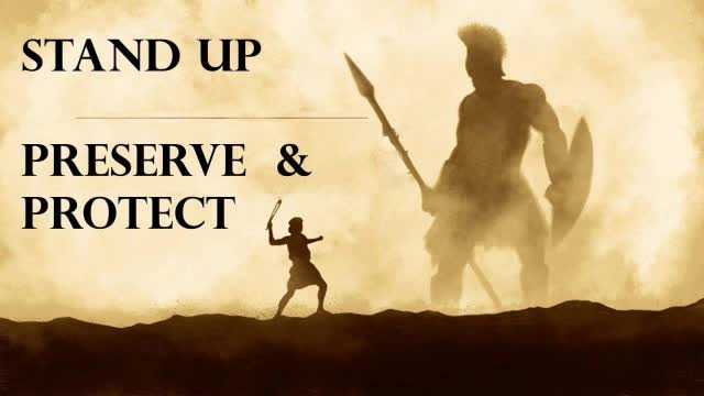 Stand Up Preserve  Protect