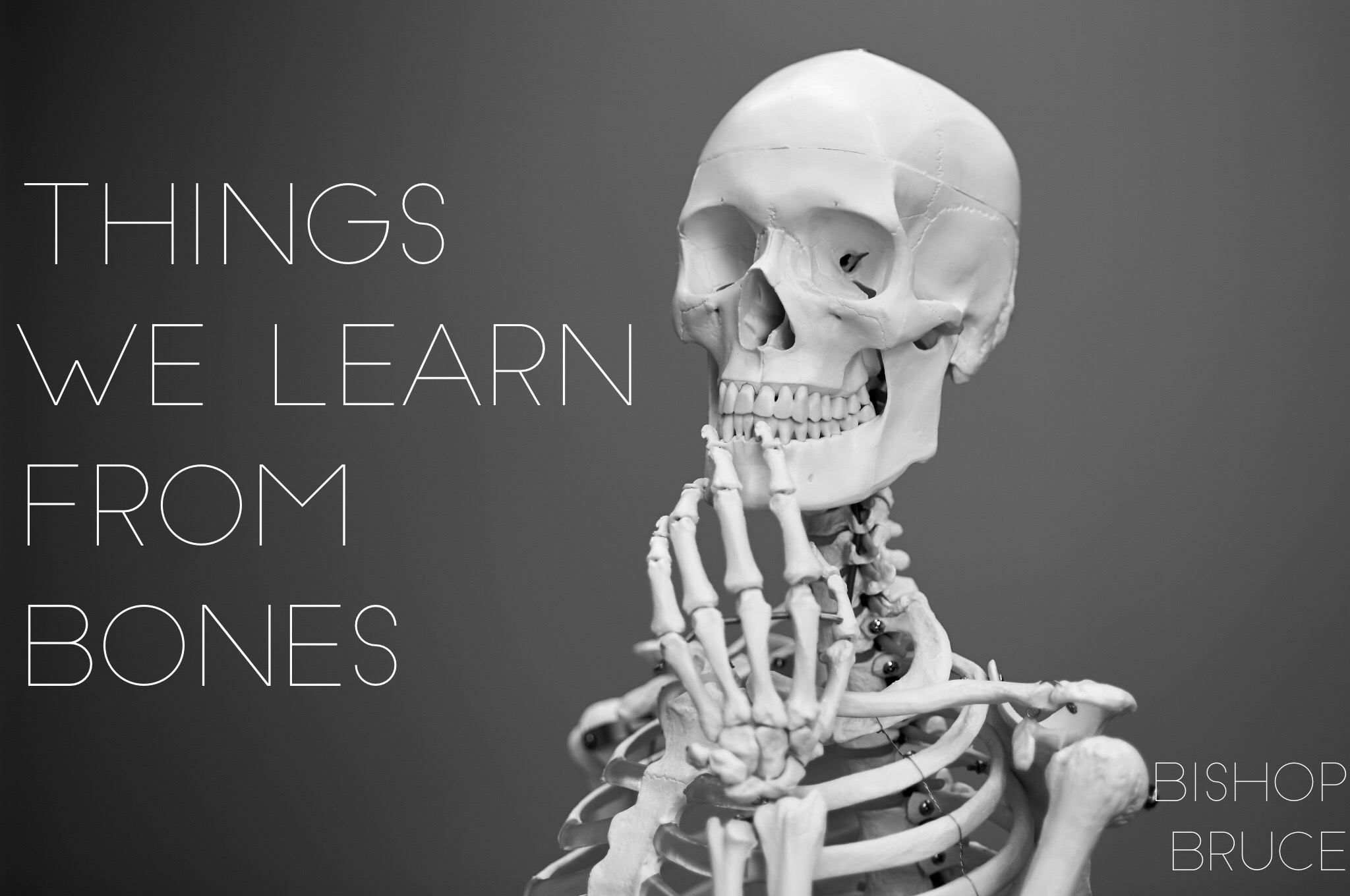 Things We Learn from Bones