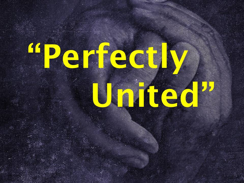 Perfectly United