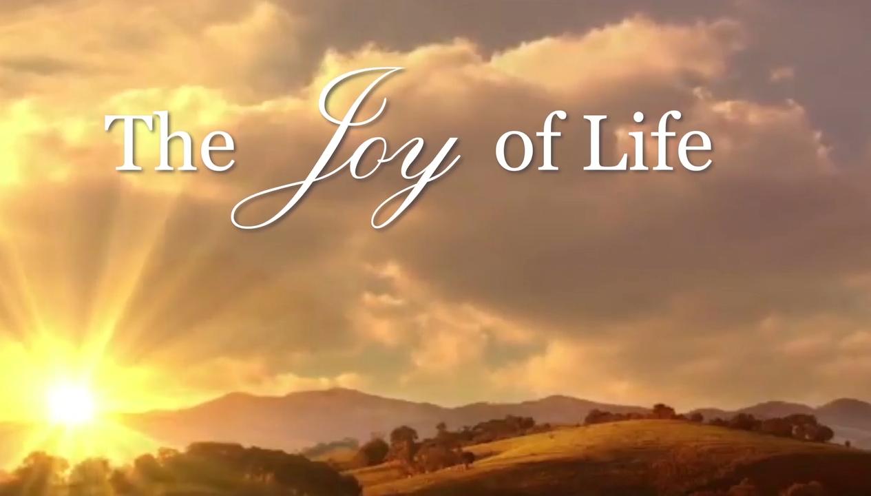 The Joy of Life -  Faith Journey