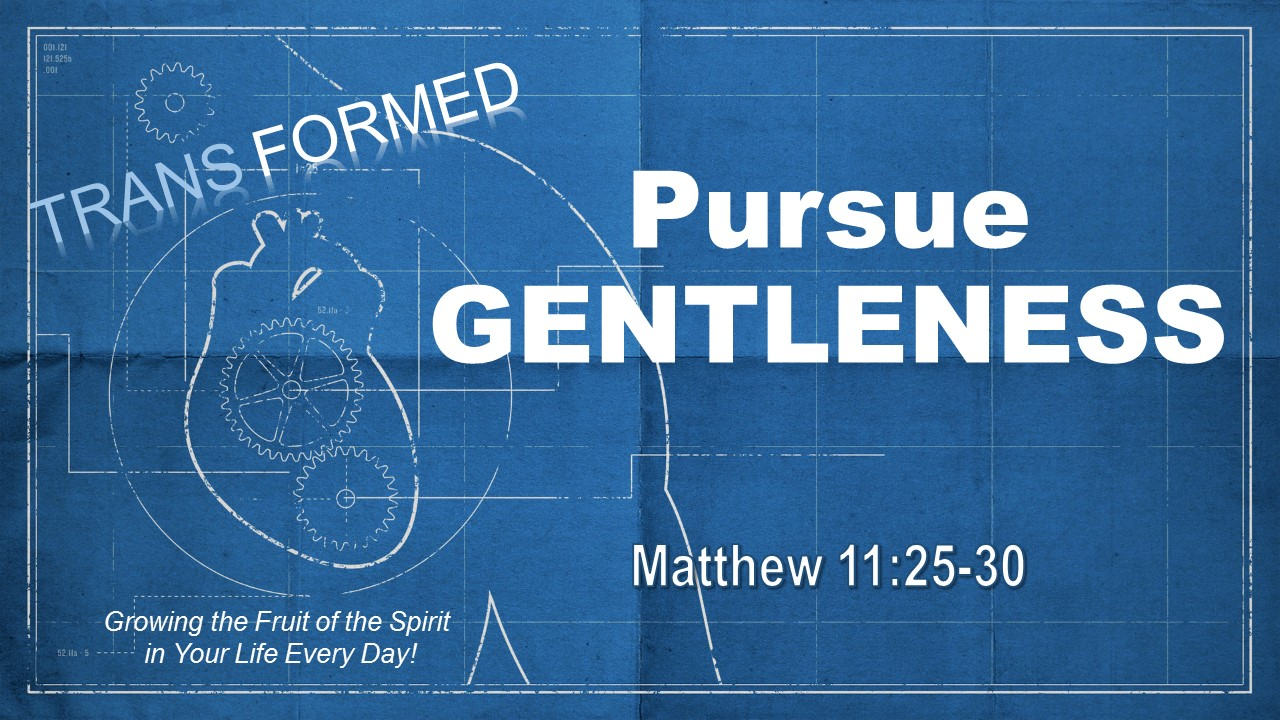 0826 AM Pursue Gentleness
