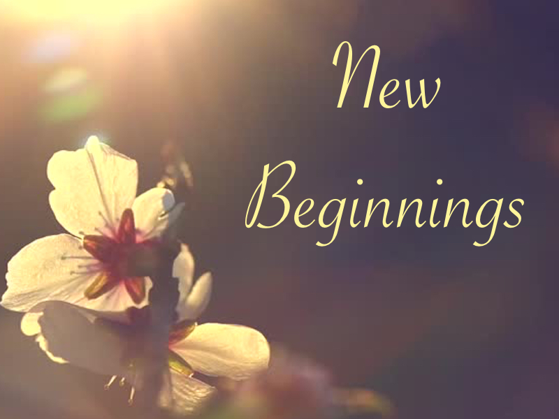 New Beginnings A Tale of Two Women