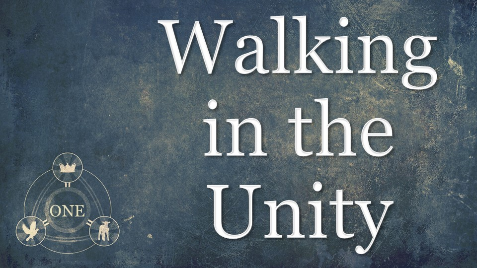Walking In The Unity