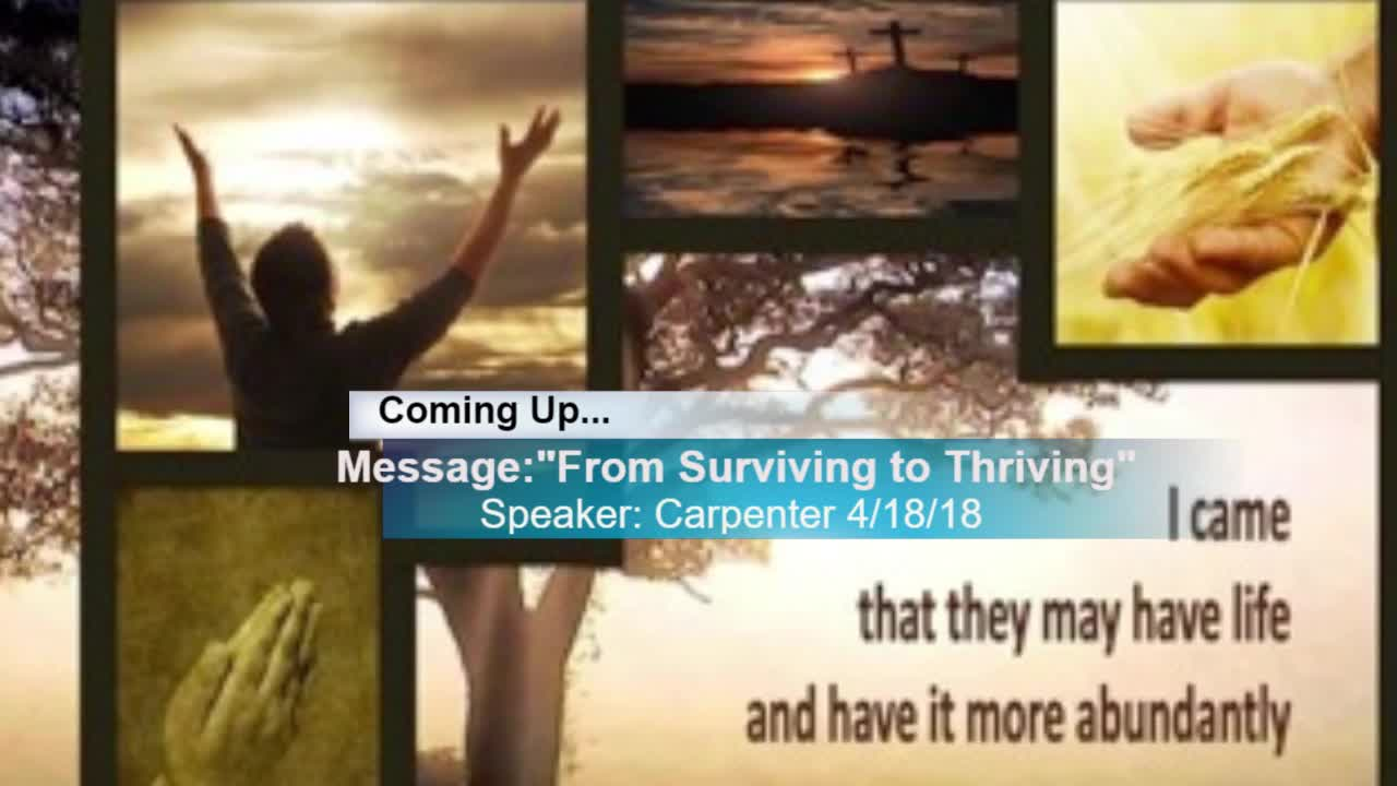 4182018 From Surviving to Thriving