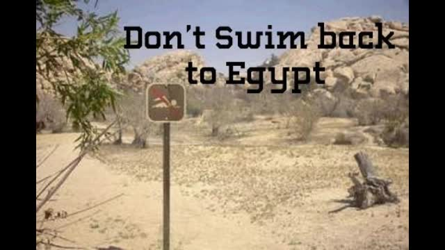 Dont Swim Back to Egypt