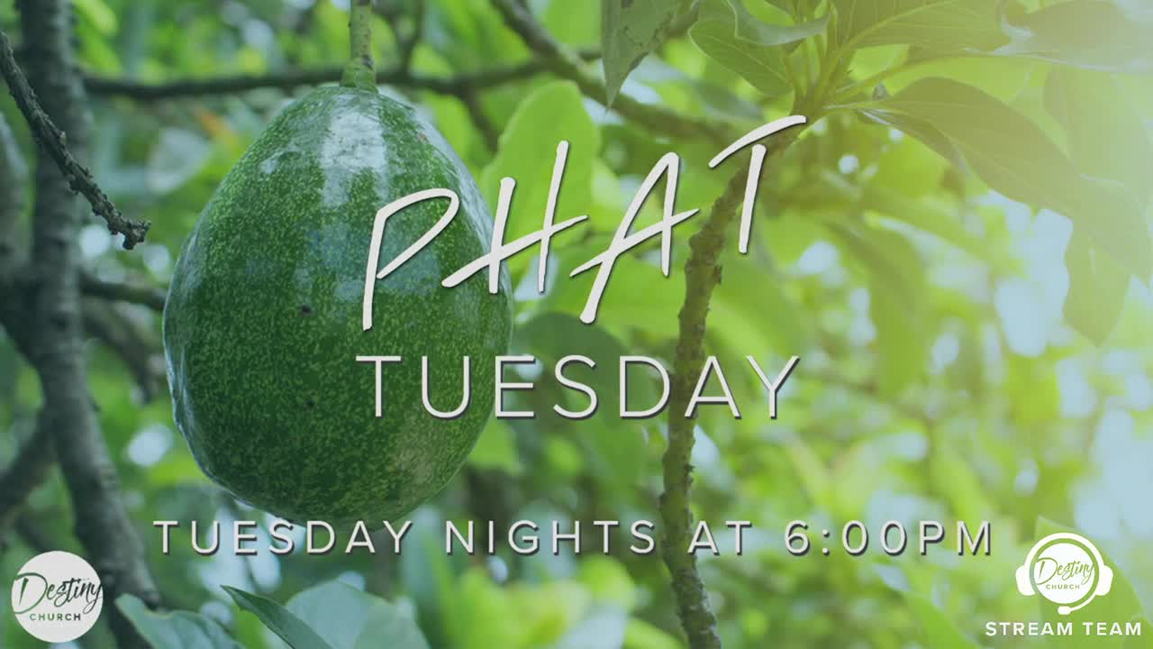 PHAT Tuesday 8.6.19