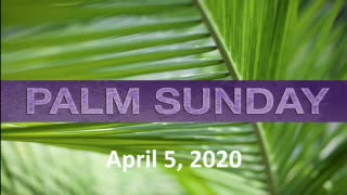 April 5 2020 Palm Sunday