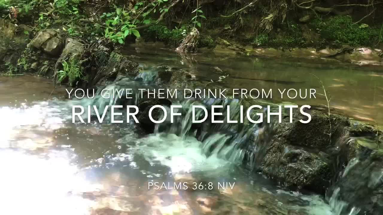 River Of Delights