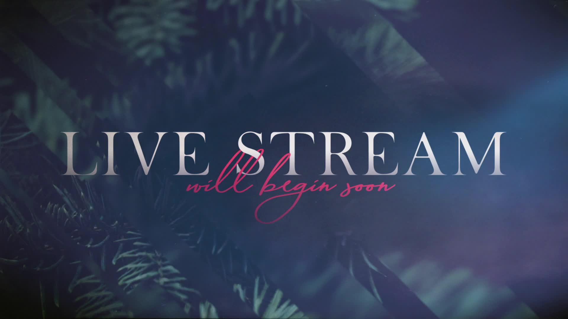 live-recording 12/15/2020 5:03:42 PM
