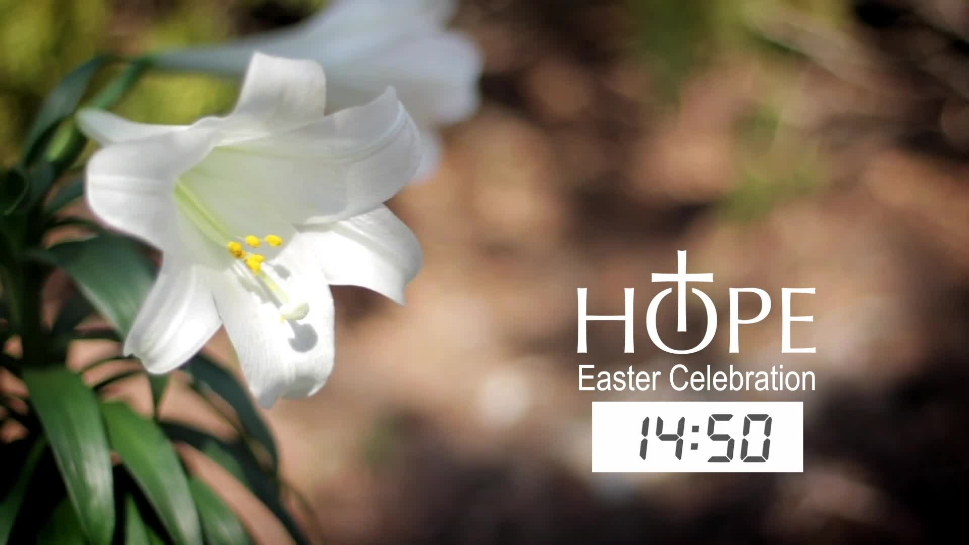 Easter Sunday -2021