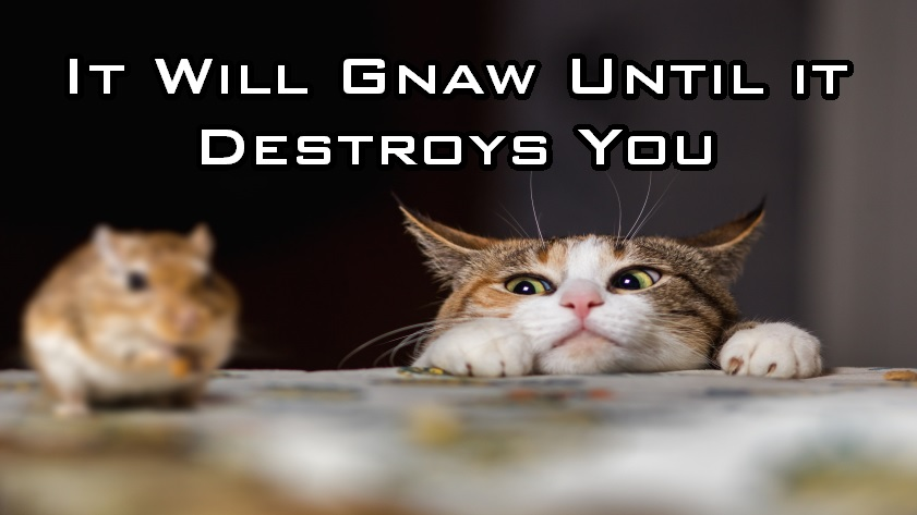 It Will Gnaw Until It Destroys You