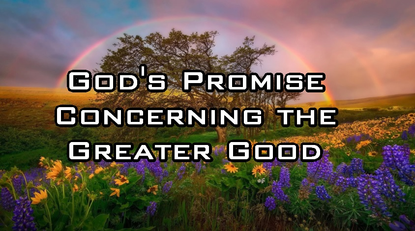 Gods Promise Concerning the Greater Good