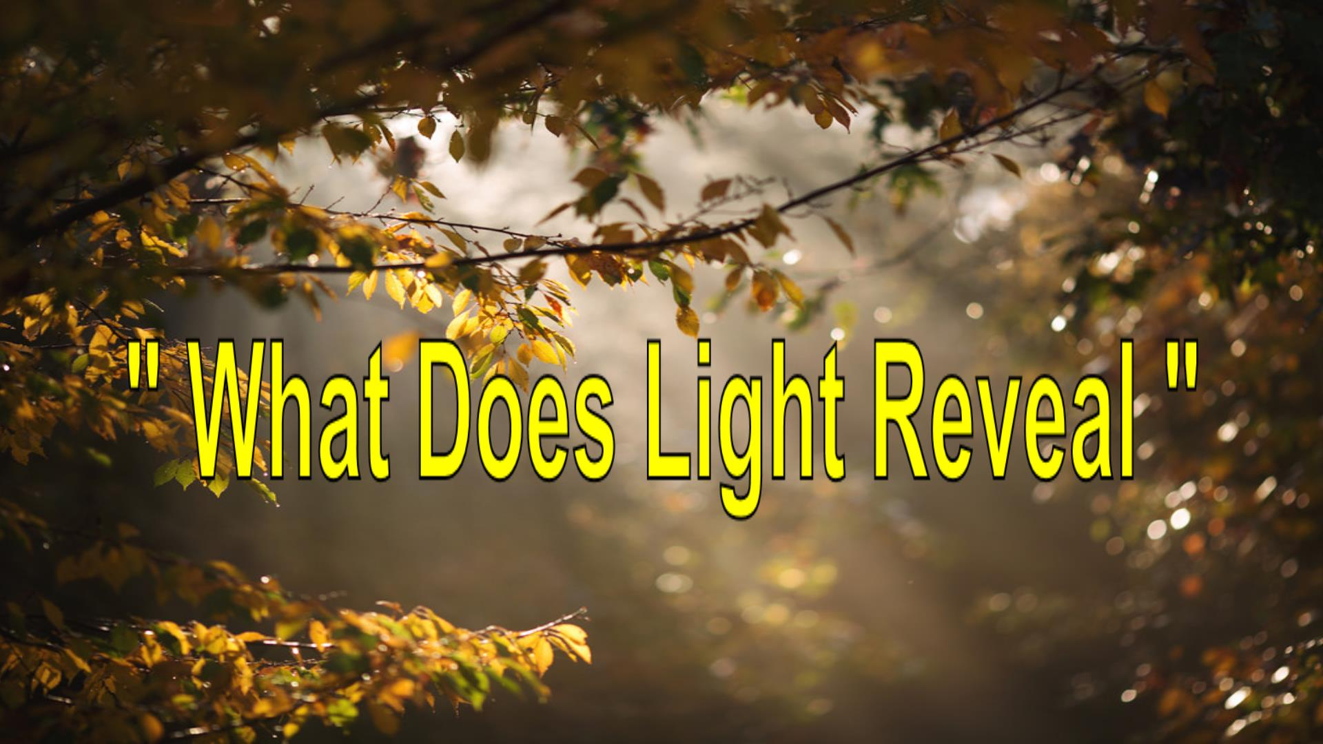 What Does Light Reveal