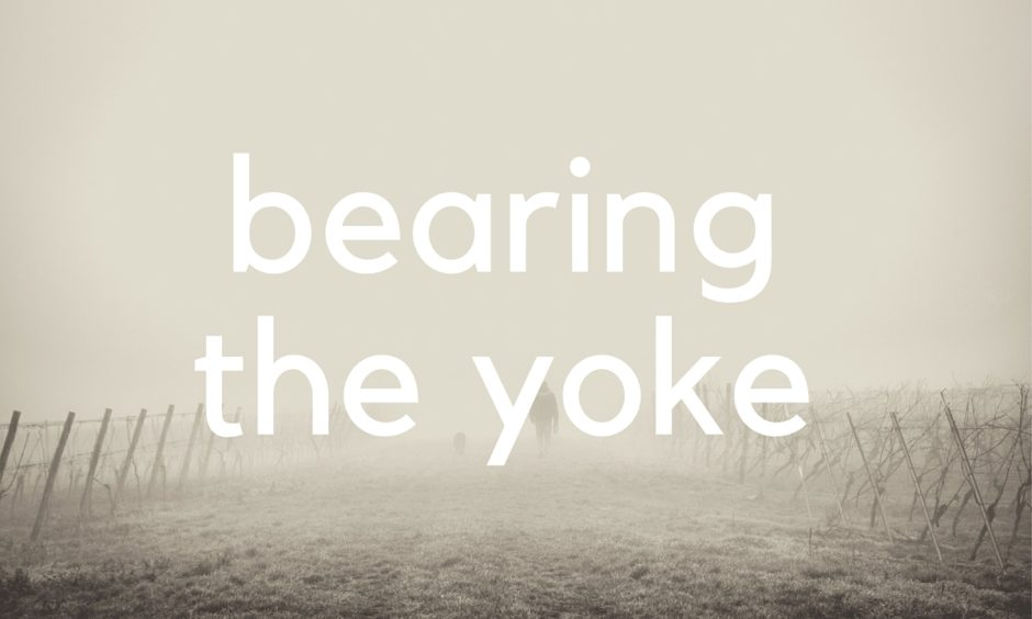 Bearing The Yoke
