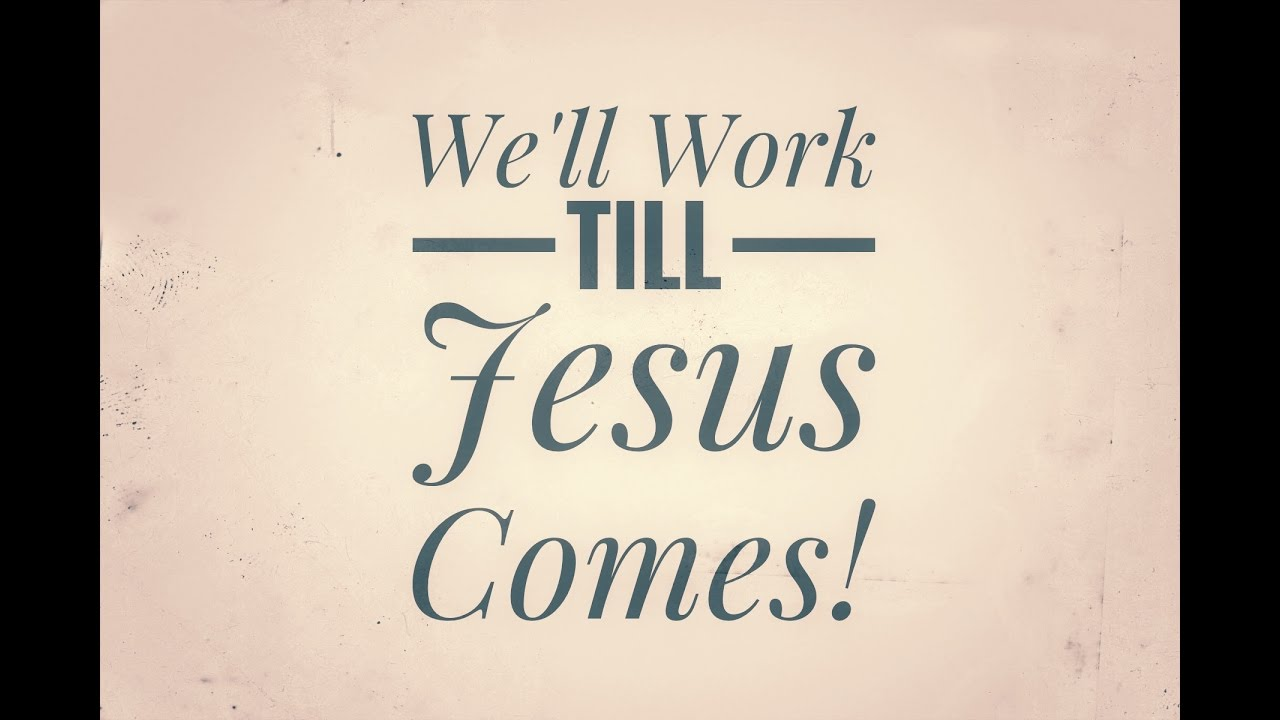 Will Work Till Jesus Comes