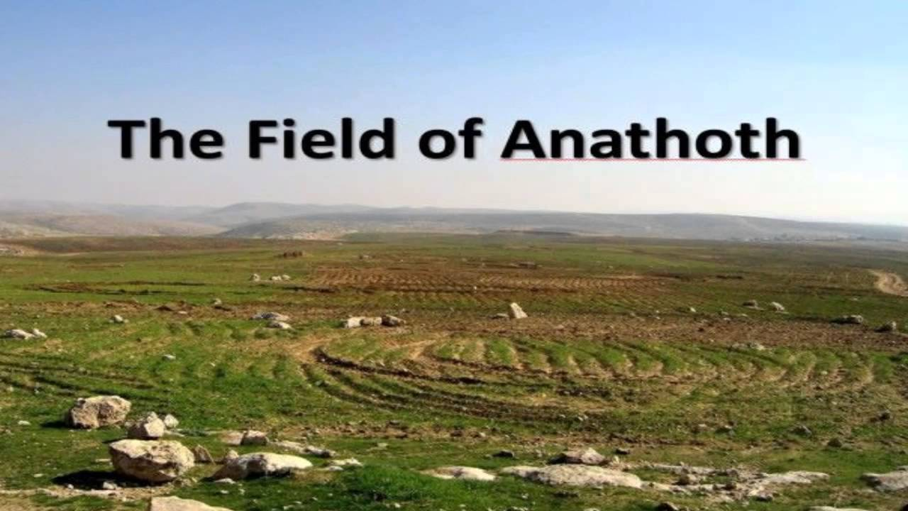 Field of Anathoth