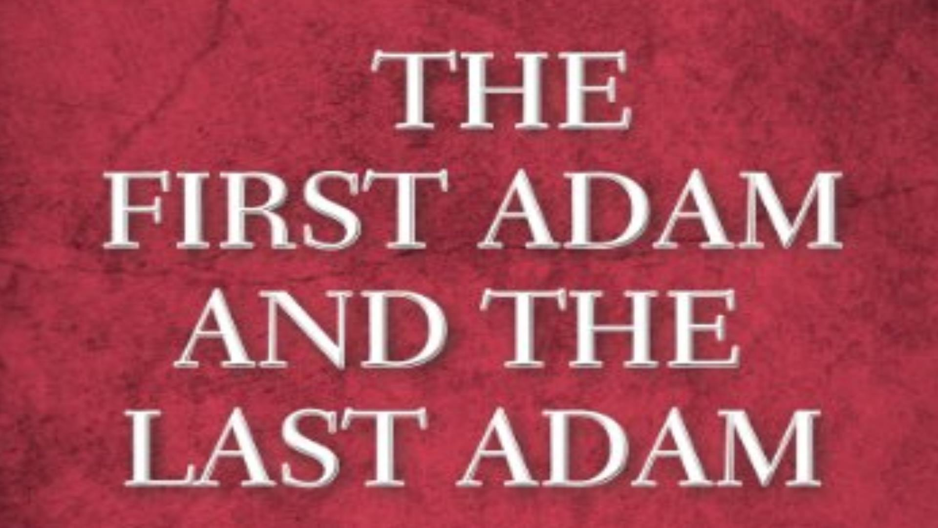 First and Last Adam