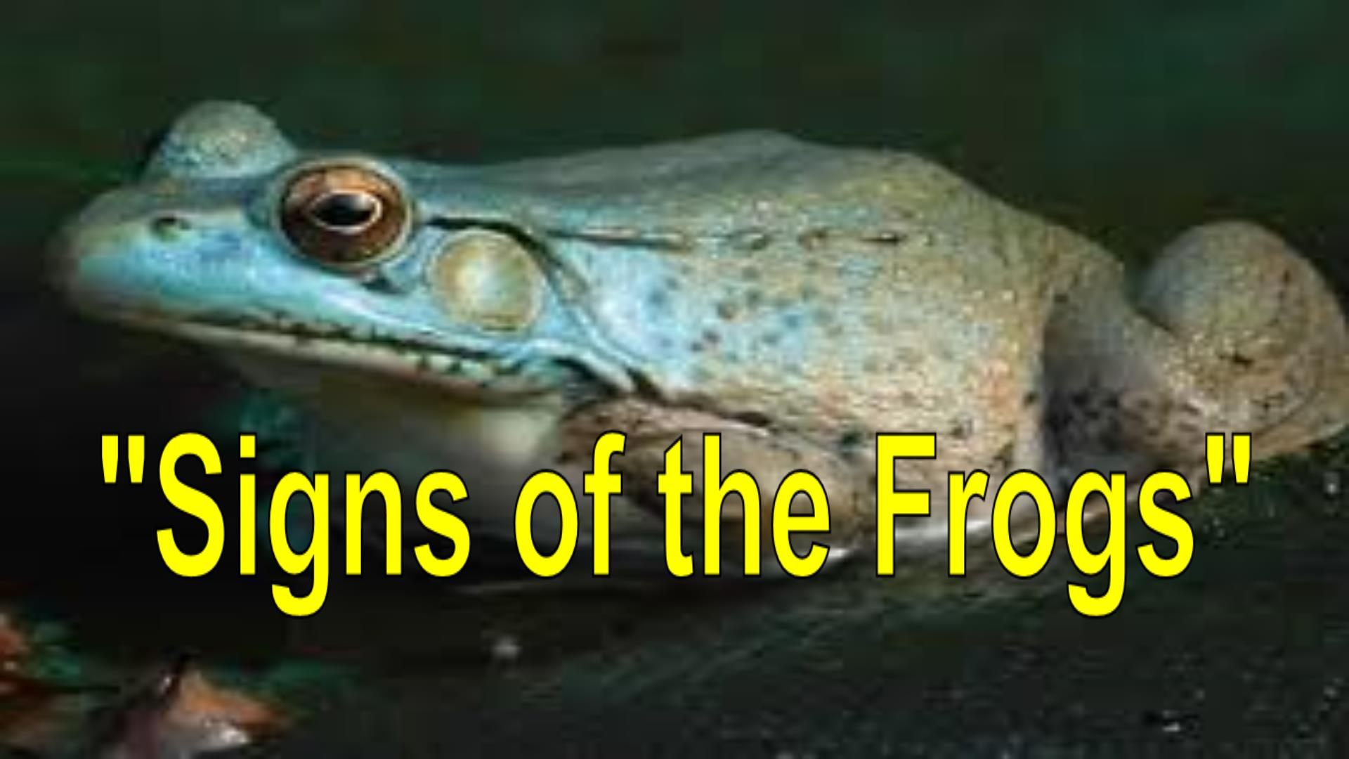 Signs of the Frogs