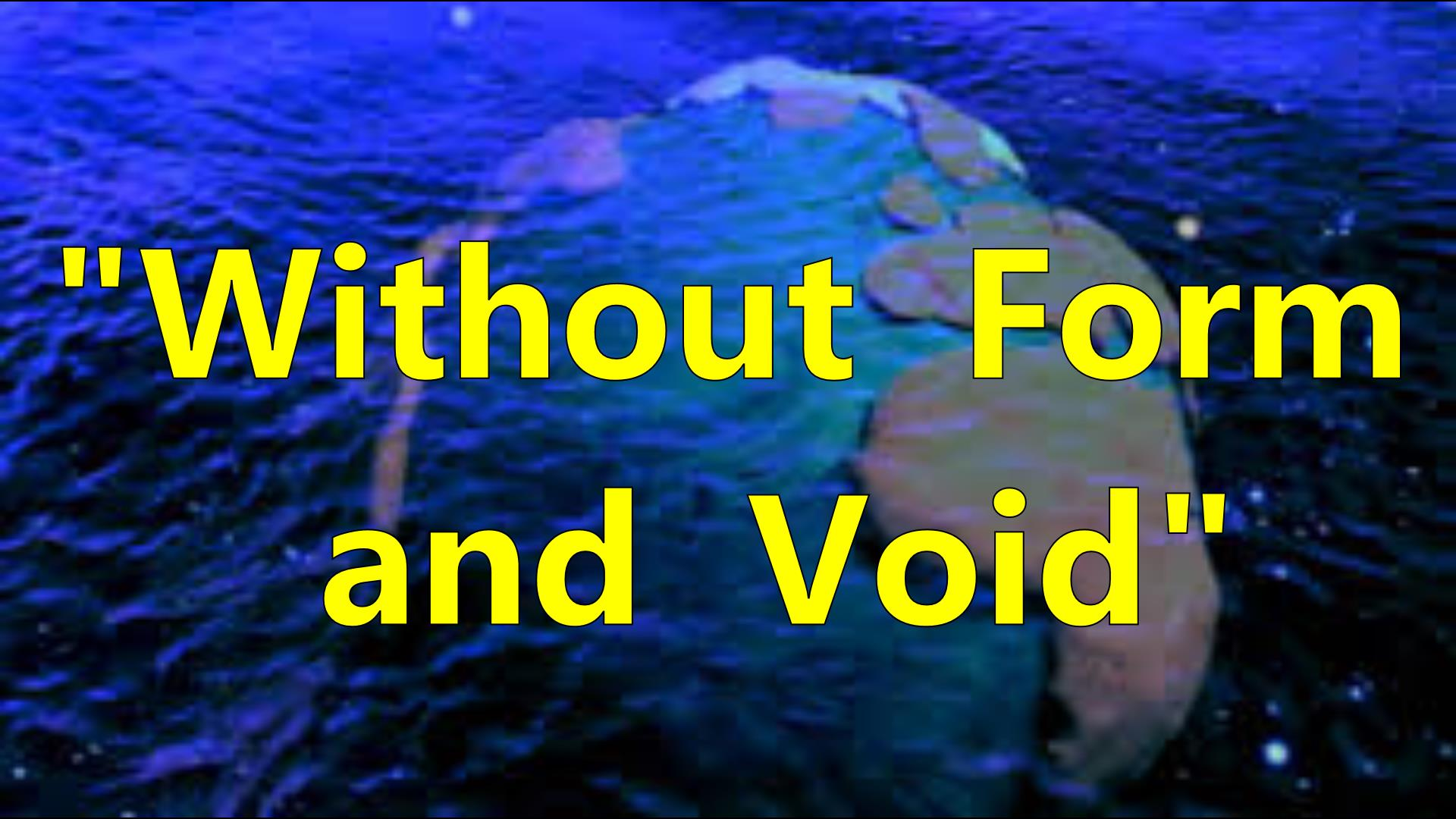 WITHOUT FORM and VOID