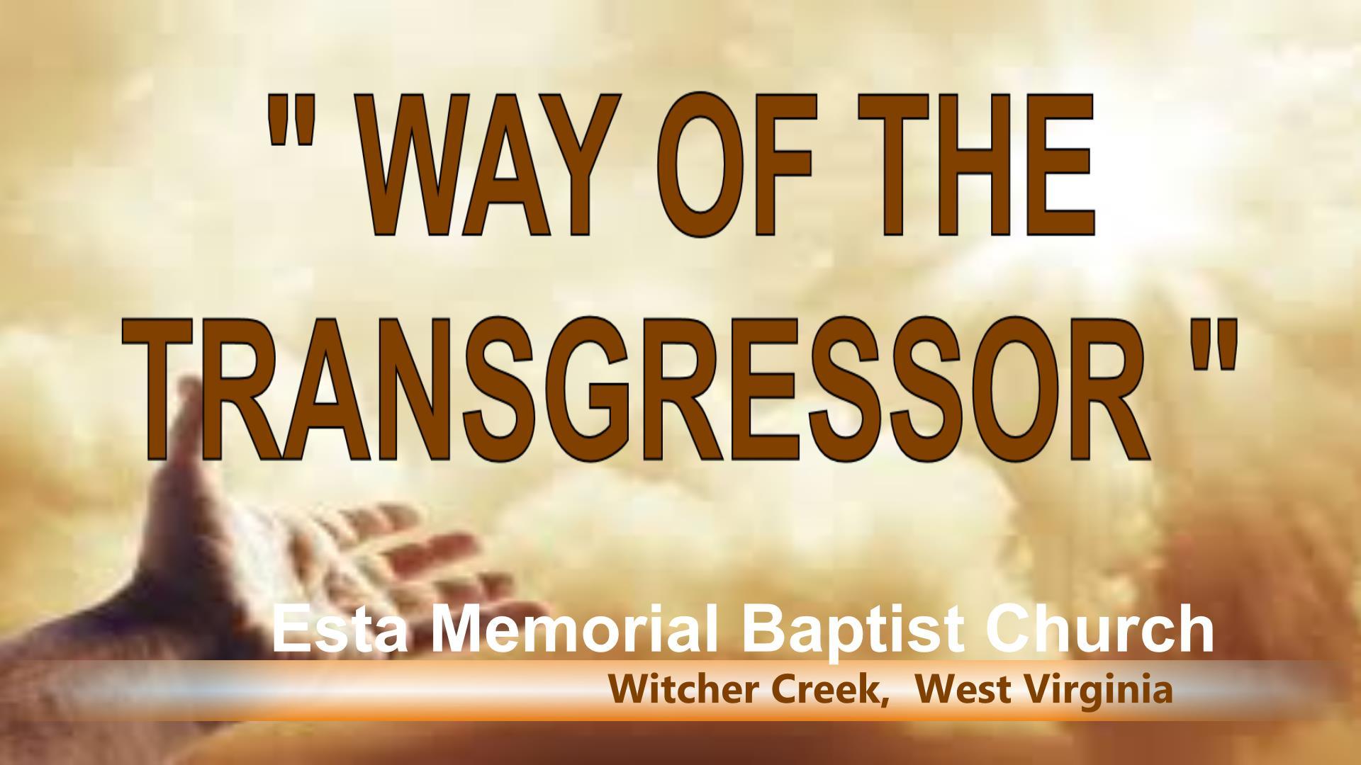 WAY OF THE TRANSGRESSOR