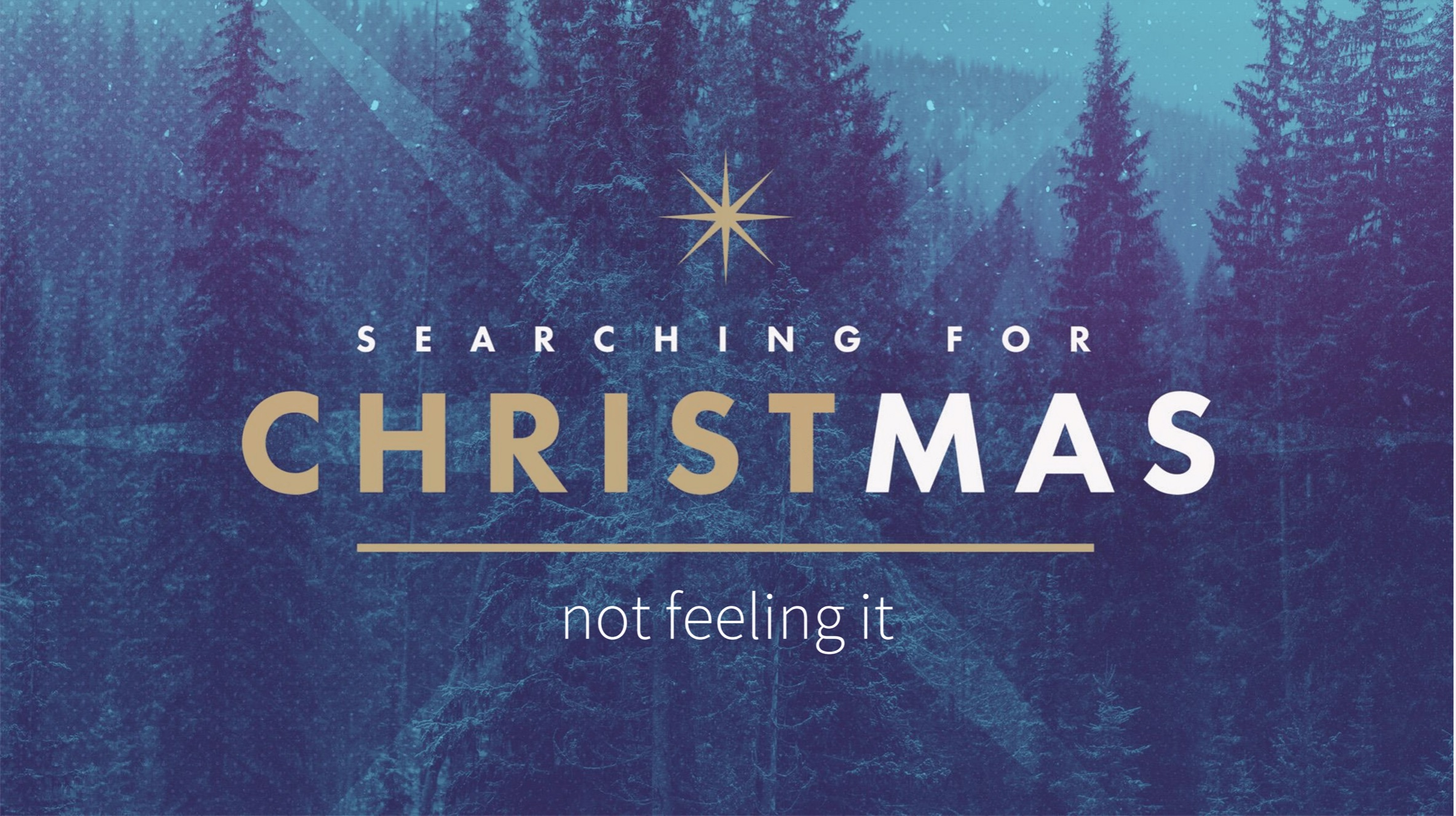 Searching For Christmas Not Feeling It