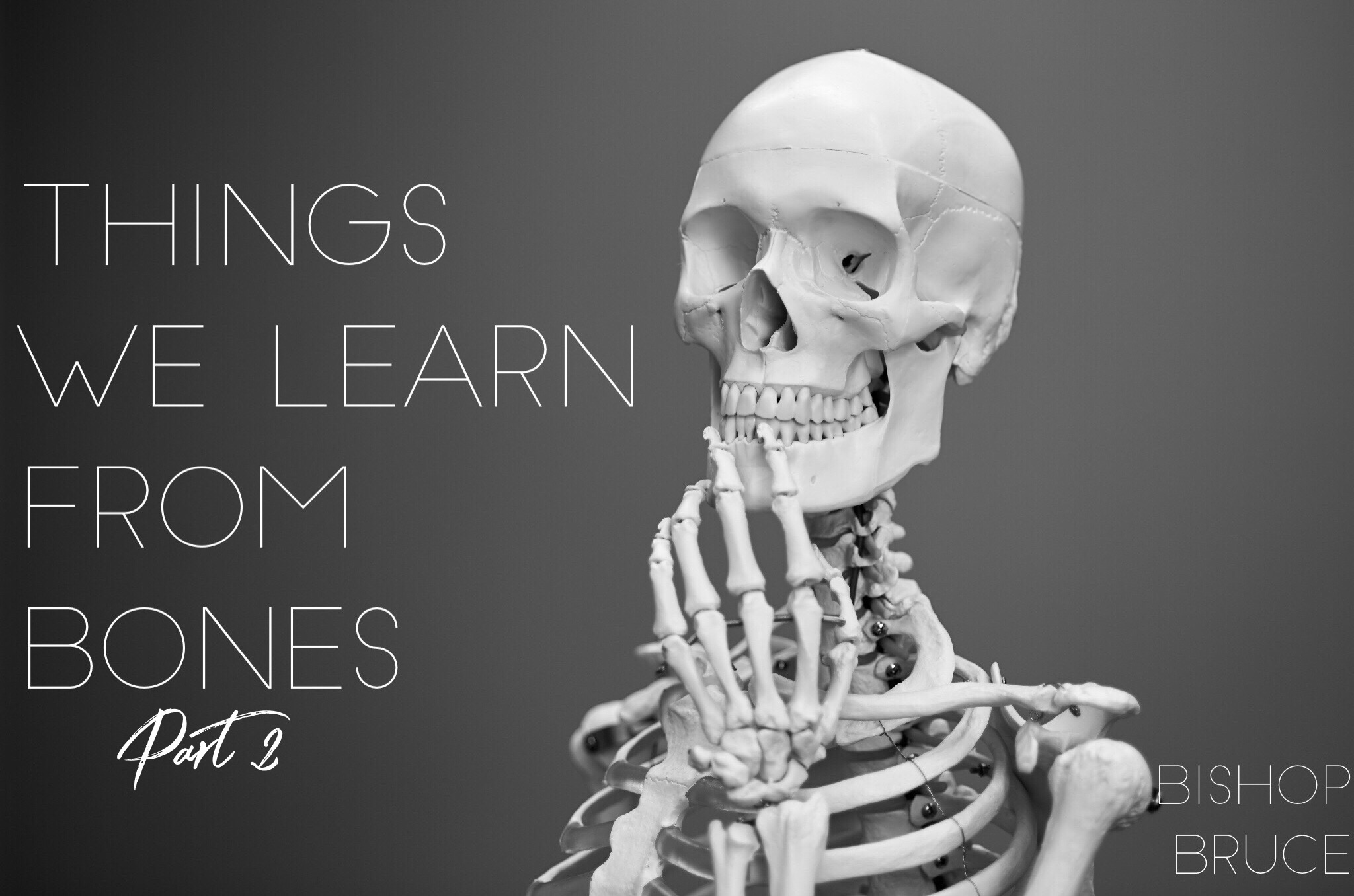 Things We Learn from Bones Pt 2