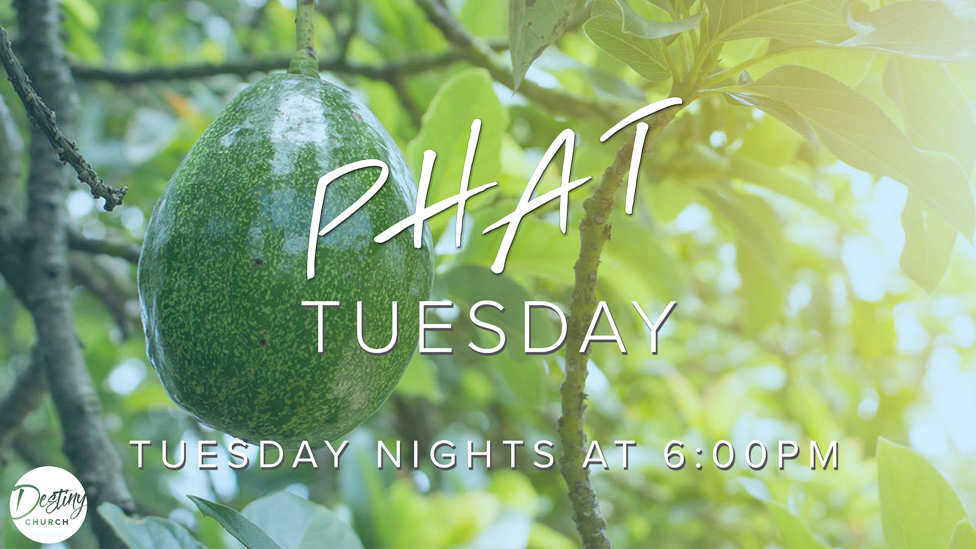 PHAT Tuesday 7/16