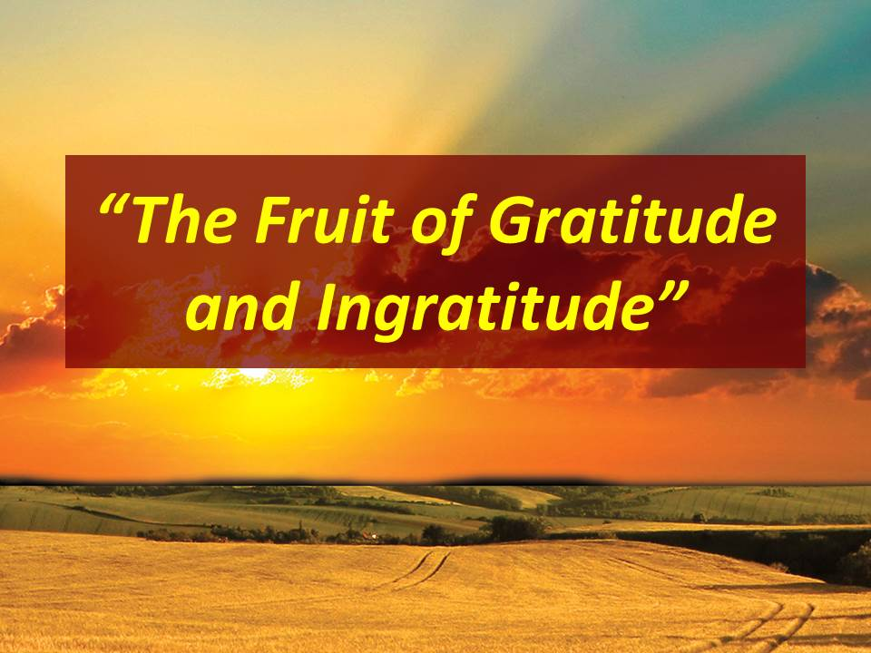 The Fruit of Gratitude and Ingratitude