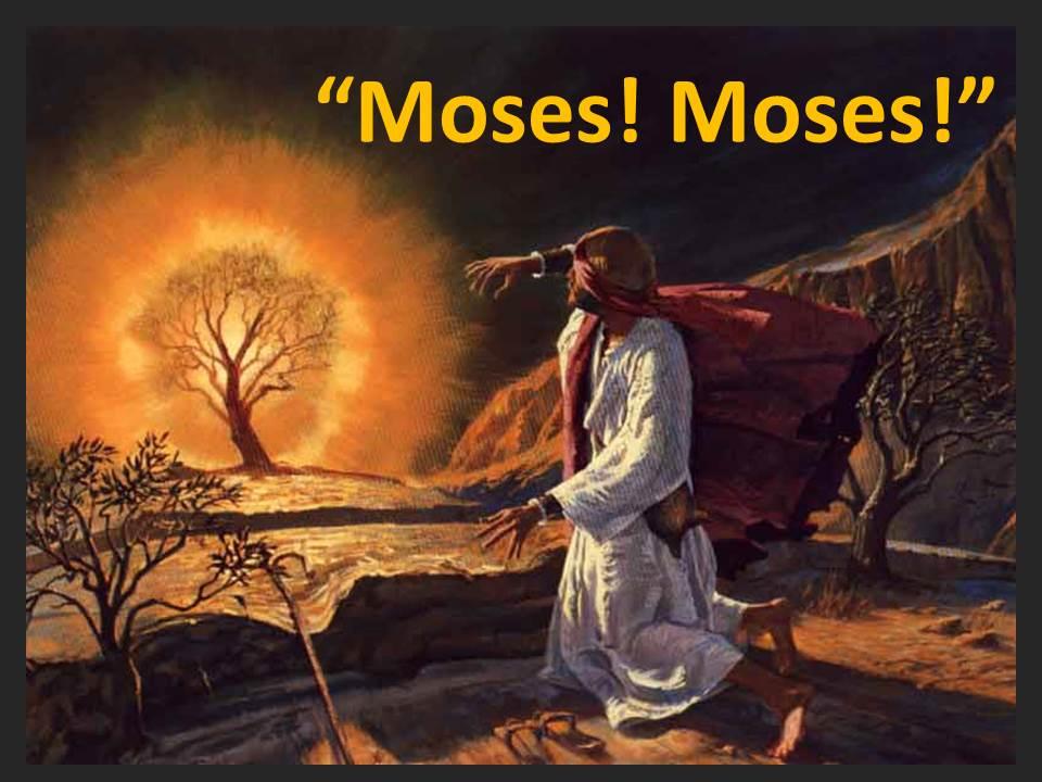 Moses! Moses!