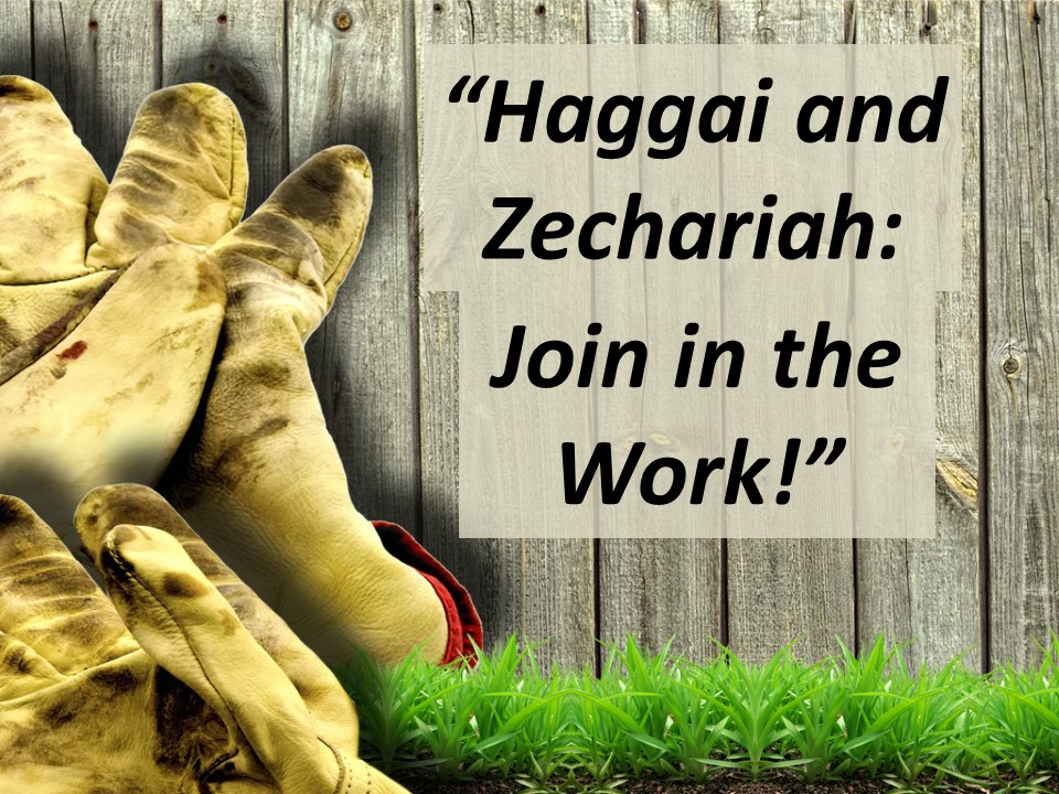 Haggai and Zechariah--Get to Work!