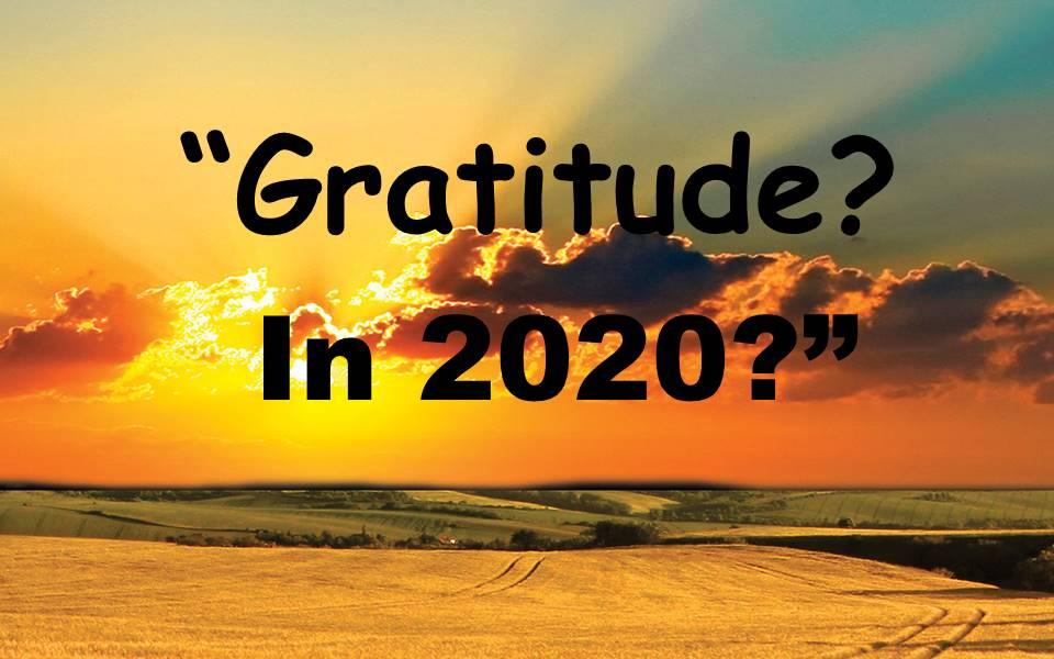 Gratitude--In 2020