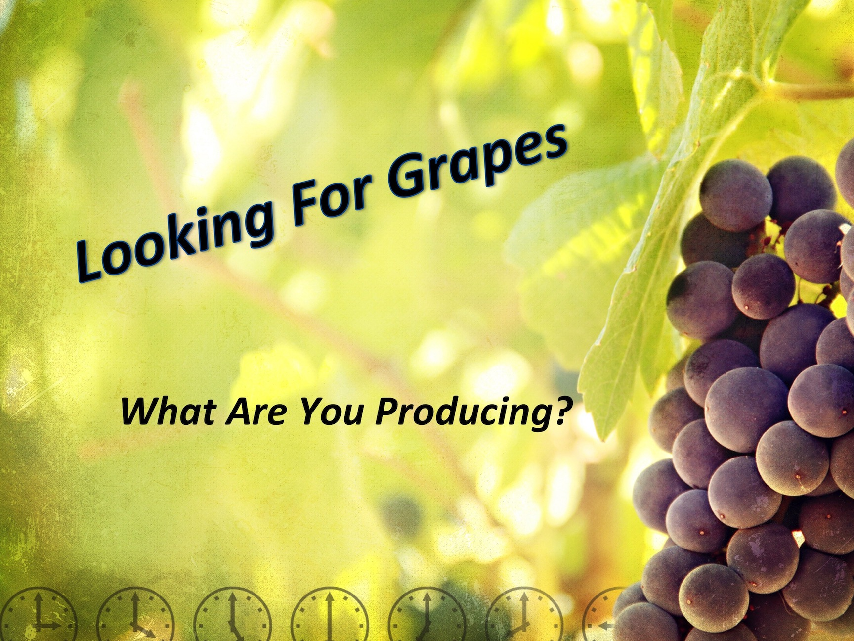 Looking For Grapes P3 6/26/2017 11 AM