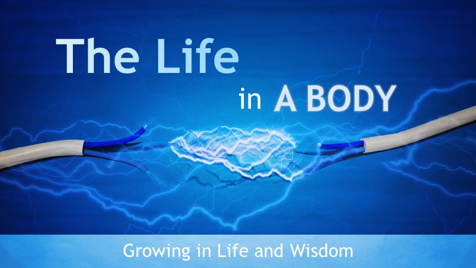 The Life in a Body